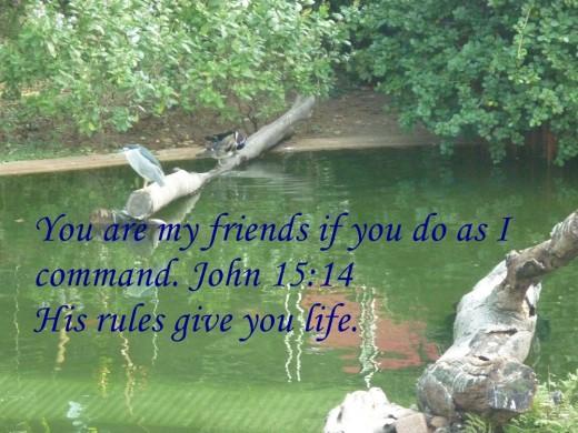 Jesus is my best friend.