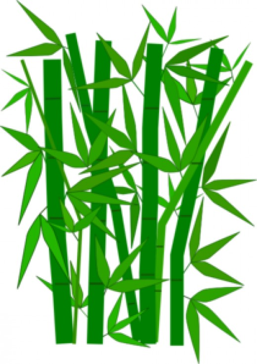 The tallest grass, the bamboo.