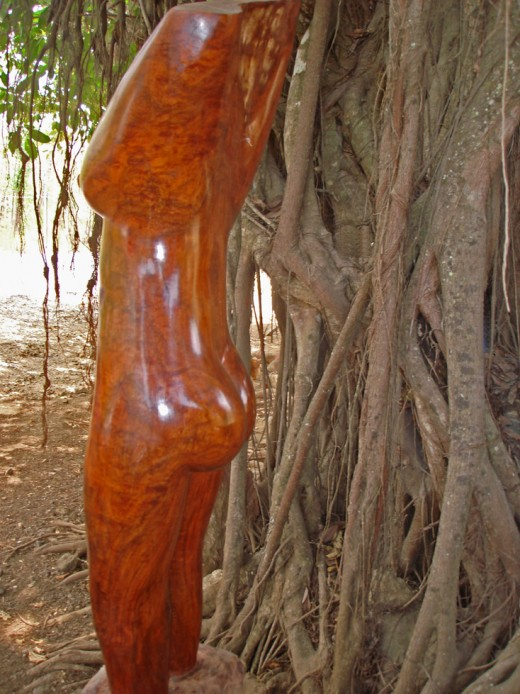 Wood carving of a woman's profile exhibited next to a strangler fig tree.  This statue is about 4 feet tall and the grain in the wood makes the piece valuable.