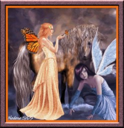 BUTTERFLY FAIRIES FOR ERIN By Robert Hewett Sr.