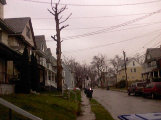 Cold and rainy spring of 2011 in Buffalo