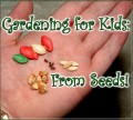 Seeds For Kids, The Veggie Garden