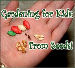 Gardening from seeds is fun and very inexpensive!