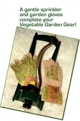 Choosing a gentle sprinkler will help to keep your newly planted seeds moist and safely in their rows!