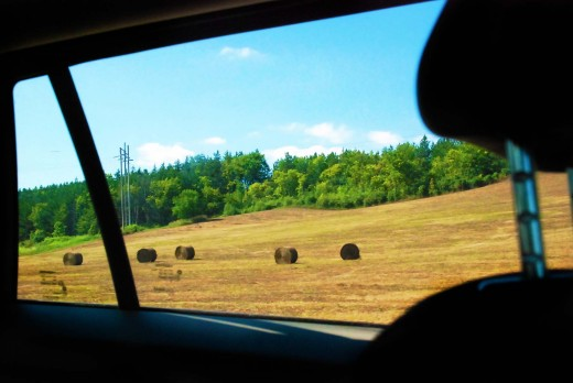 Smell of hay, burnt grass from the sun; a sight so delightful, peaceful countryside.