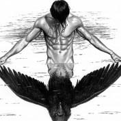 silverstararrow profile image