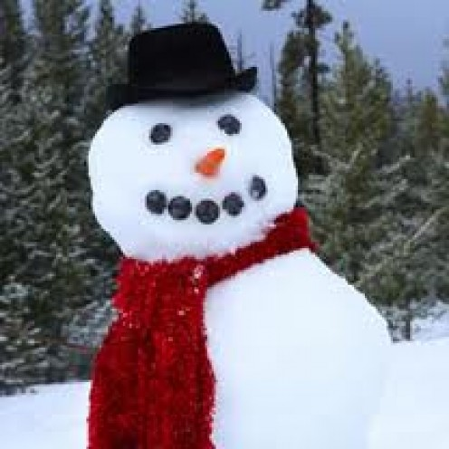 WHAT IS CHRISTMAS WITHOUT A SNOWMAN?