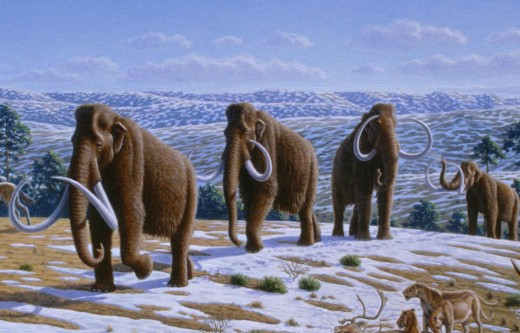 Ancient hunters followed the wooly mammoth into America across the Bering land bridge.