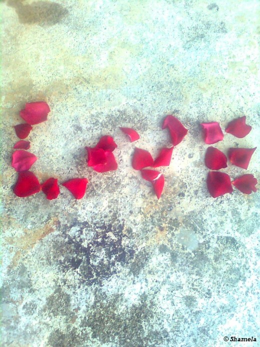 I used rose petals for this picture.
