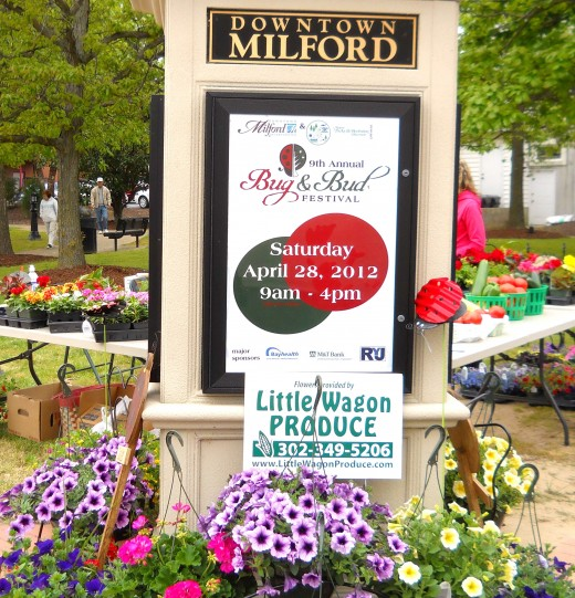 Each spring Milford hosts a free Bug and Bud Festival with family entertainment, kid's activities, informational booths and vendor booths.