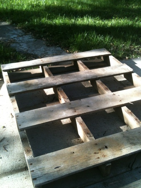 Step 1: Remove every other board on the pallet (on the front side, or the top, as shown in picture). By doing this, we will create more open space for the plants, and less dirt will be used to fill the pallet.