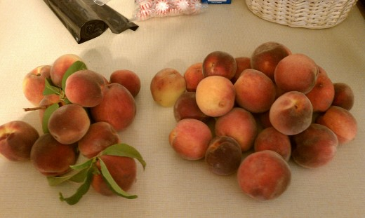 Pick a peck of peaches from Smolak Farms!  (They tasted as good as they look.)