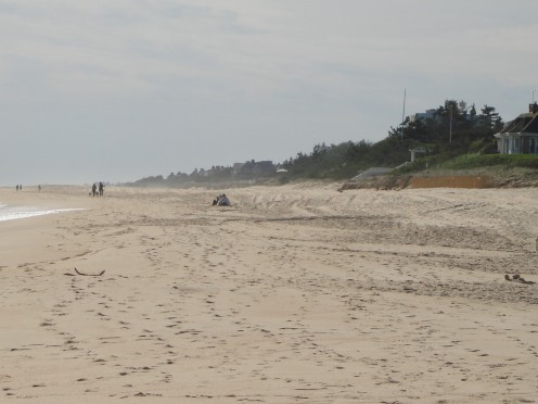 Main Beach in East Hampton was named Best Beach by Dr. Beach.