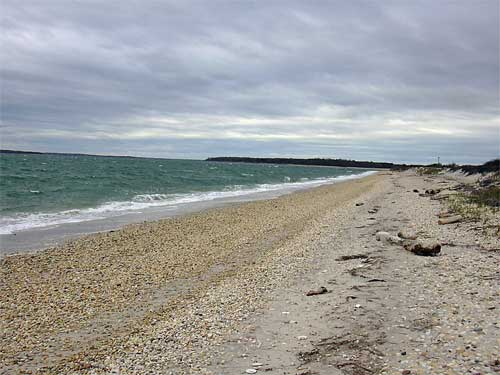 Southampton beach, another of The Hamptons' beautiful beaches.