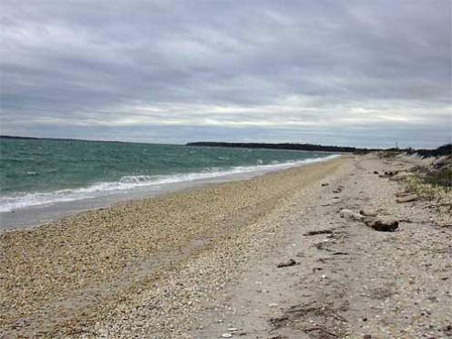 Southampton beach, another of The Hamptons' beautiful beaches.