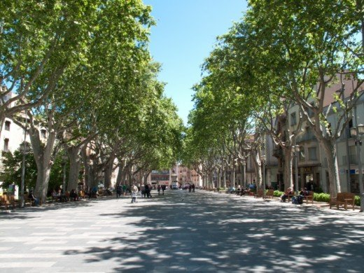 La Rambla...the perfect shady spot to watch the world go by.