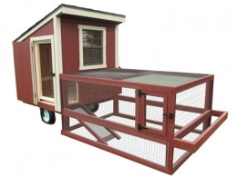 Backyard Portable Chicken Coop