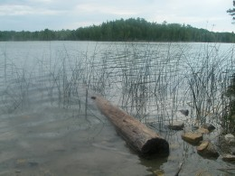 An inland lake.