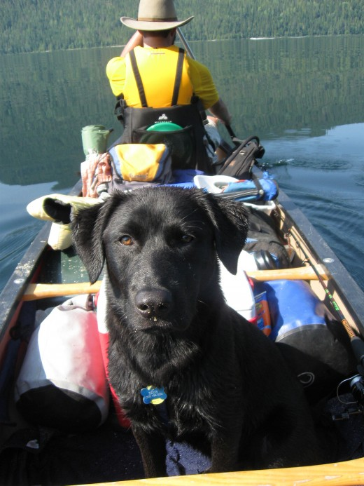 The author and his dog Zeus on a camping trip on Upper Priest Lake in northern Idaho