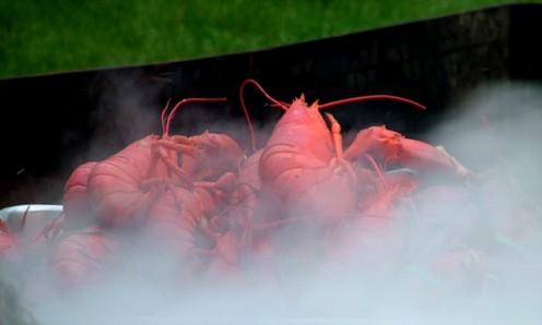 lobster seafood boil
