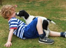 Puppy loving back