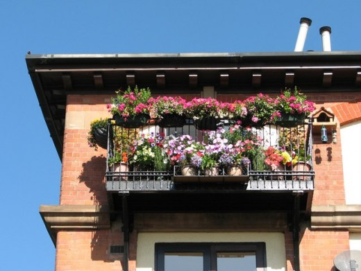 The balcony remains, with its flowers and its sun...