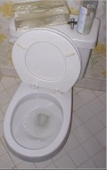 The Flush Toilet--Interesting Facts on an Amazing Invention