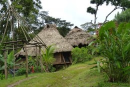 Embera Indian homes with new one under construction on left side.