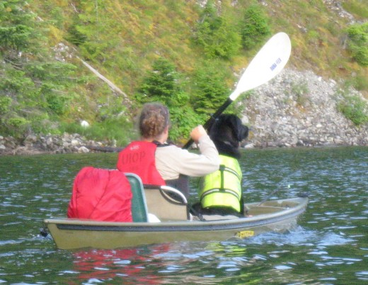 A brightly colored lifejacket will ensure your dog can be seen, whether in the water or on the dock