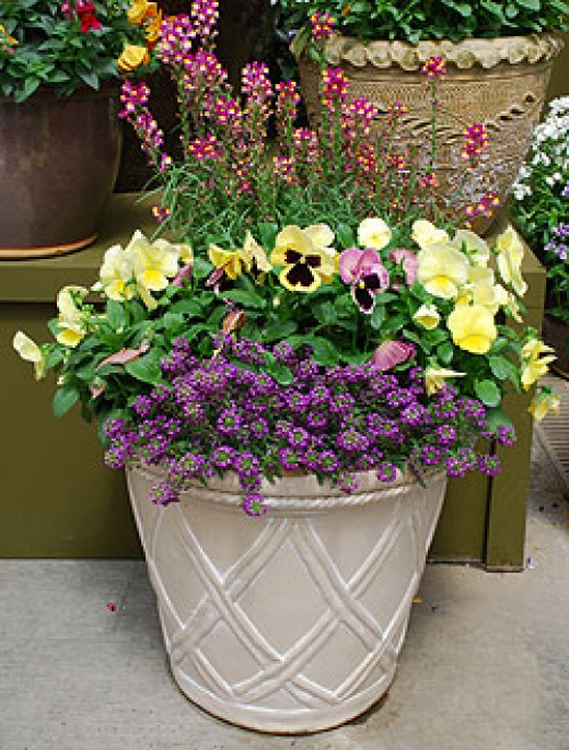 flower pot ideas modern container garden ideas dengarden 13330