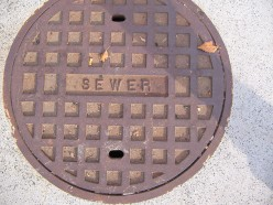 Everything You Ever Wanted to Know About Sewers