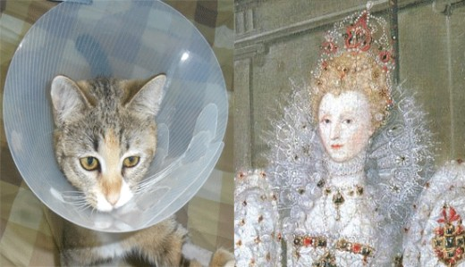 The Elizabeth Collar, as worn by Sandy the Cat and Elizabeth the First.