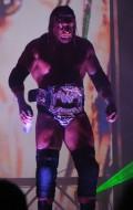 12 time world champion Triple H