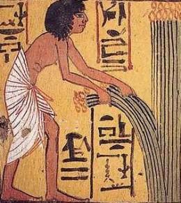Egyptian representaion of harvesting wheat