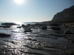 Fossil beds exposed at low tide on the Jurassic coast