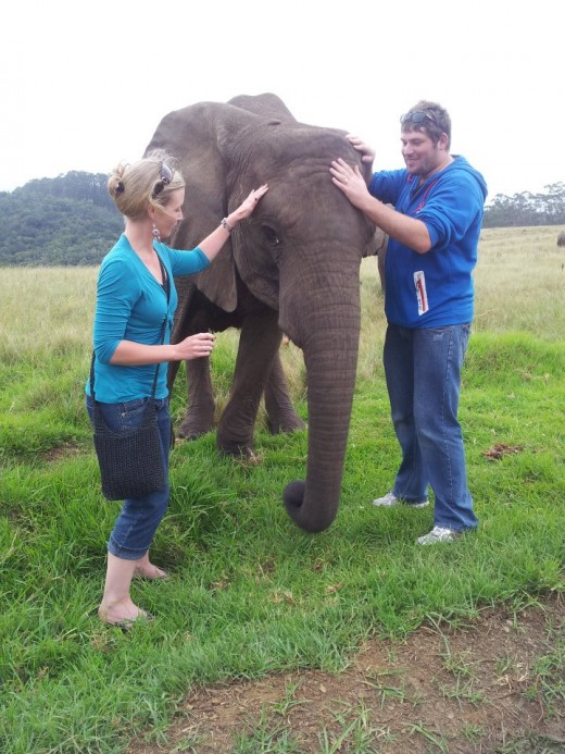 My husband and I saying hi to one of the baby Elephants at the Knysna Elephant Sanctuary