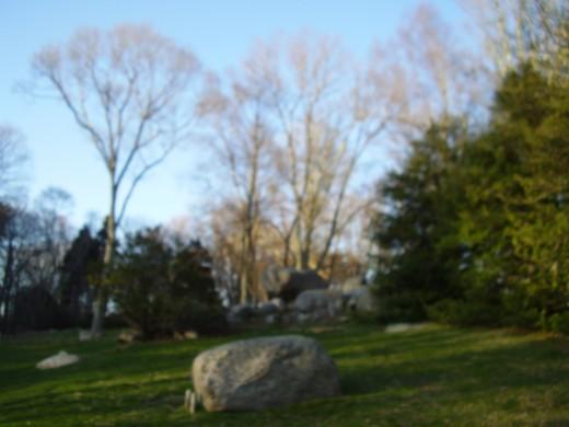 Perfect picnic spot!