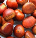 Cooking Fresh Chestnuts, Roasting, Dessert, Chestnut Stuffing Recipes