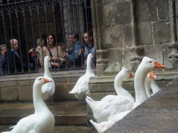 The 13 Geese represent 13 punishments for a heretic.