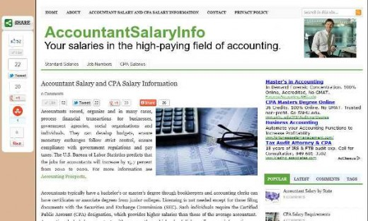 My first business website: Accountant Salary Information