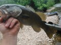 A Short Early May, 2012 Float Trip To Catch Smallmouth Bass On The Creek
