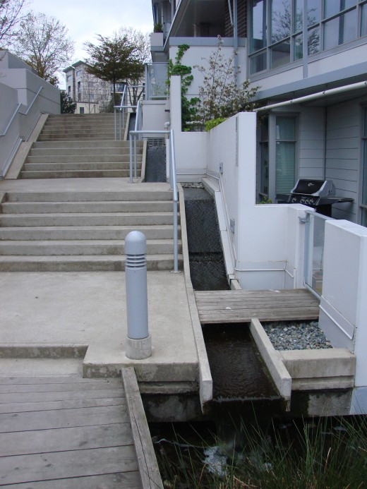 "Storm water runoff ""waterfalls"" add a nice aesthetic to this stairwell. Thin bike ramps follow the stairs up and down making for easy bike transport."