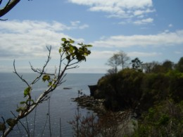 View from The Cliff Walk, Newport, R.I.