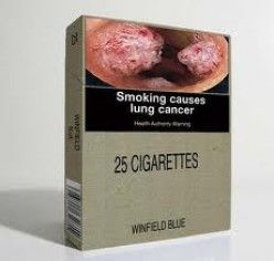 Plain-Packaging and Kids: The Case for Cigarettes Sold  in A Plain Brown Wrapper