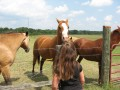 Great Toys for Horses and Ponies - Watch the Video!!
