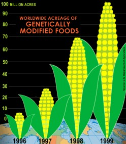 Genetic Engineering: A Solution to World Hunger or Just Another Money Maker?