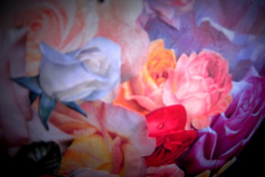 Detail of layered rose pictures.