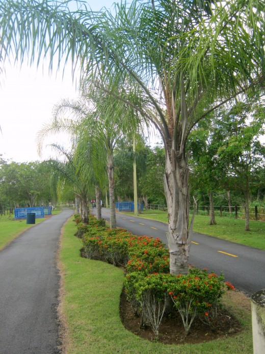 Parque Lineal Rio Bayamon, PR