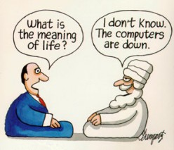 What is the meaning to life?