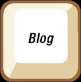Follow my niche blog launch from start to success